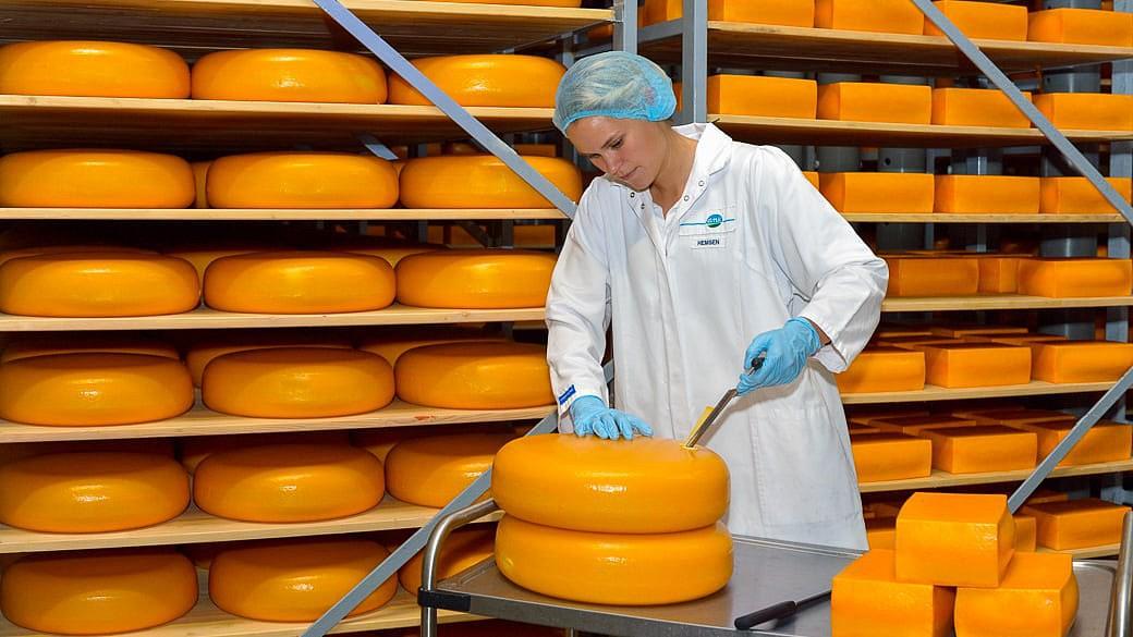 Molkerei DMK darf russische Käsehersteller kaufen