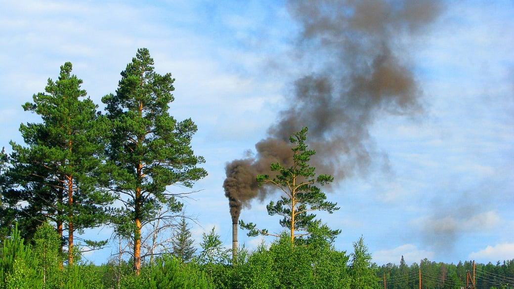 Medwedew: Umweltprobleme trotz Budgetschwierigkeiten angehen