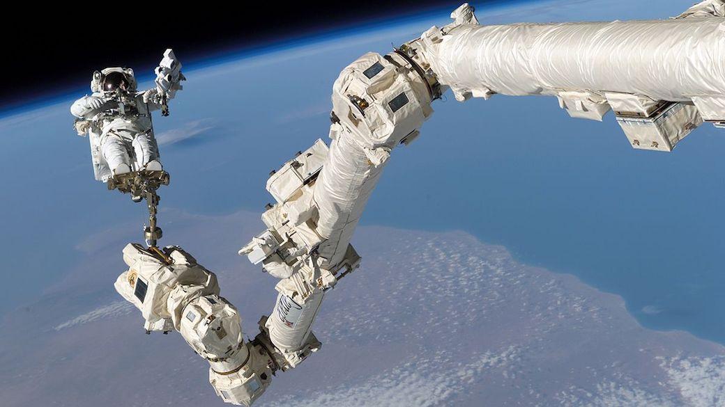 Originalbeschreibung der NASA: An den Füßen auf dem Roboterarm Canadarm2 der Internationalen Raumstation verankert, nimmt der Astronaut Stephen K. Robinson, Spezialist der Mission STS-114, am dritten Außeneinsatz (EVA) dieser Mission teil. Der schwarze Weltraum und der Erdhorizont bilden den Hintergrund des Bildes (3. August 2005).