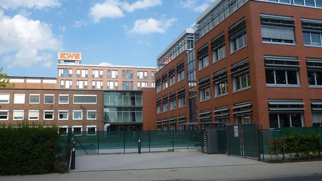 KWS investiert in Maissaatgut-Fabrik in Krasnodar