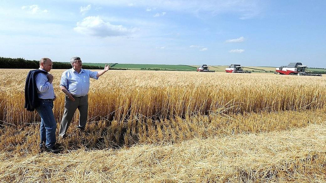 Putin besucht eine Landwirtschafts-Kooperative