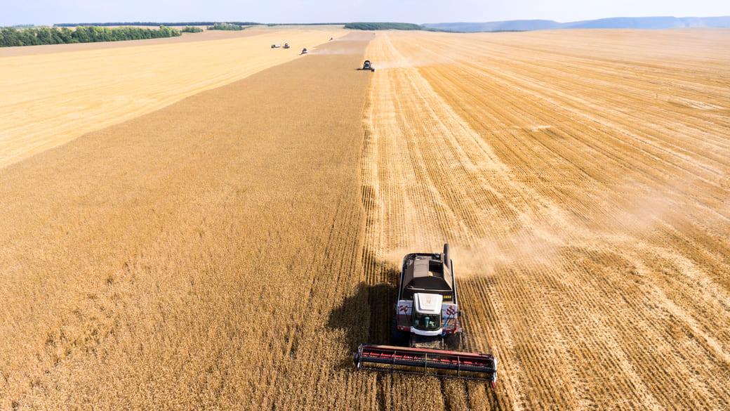 Erntezeit Landwirtschaft