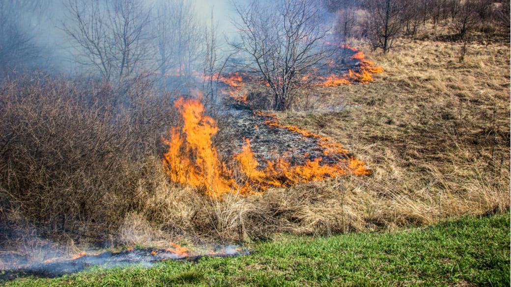 Brennender Wald in Sibirien